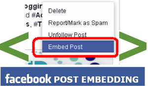 Now Share Your Facebook Post in Blogs by Post Embedding