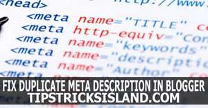 Fix Duplicate Meta Description Tag