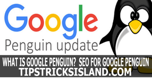 Google Penguin?  SEO for Google Penguin
