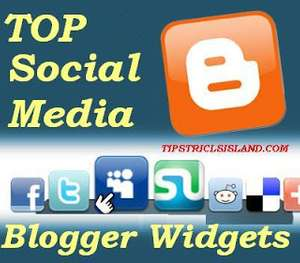 Top 10 Social Media Widget for Blogger